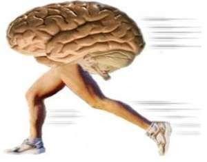 Le phénomène de la fuite des cerveaux s'accentue